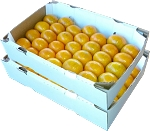2 Trays - Honey Tangerines with...