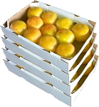 4 Trays - Ruby Red Grapefruit with...