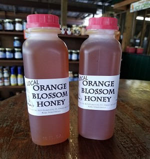 Orange Blossom Honey *Raw & Unfiltered